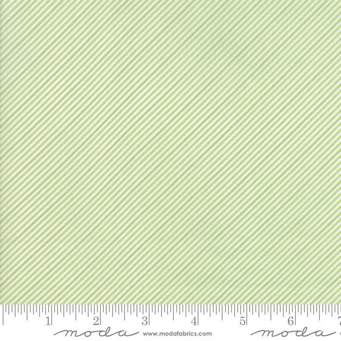 Coledale Stripes in Light Green