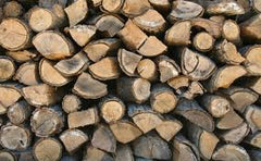 best winter firewood