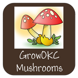 growokc mushrooms for sale