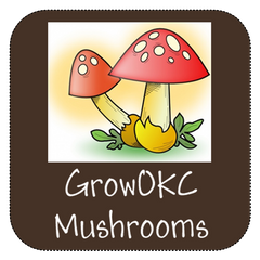 organic mushrooms for sale