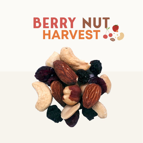 Berry Nut Harvest