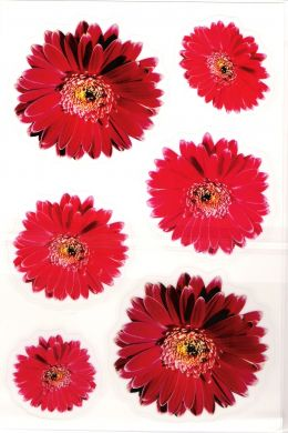 Wall Avenue Real Flowers - Red
