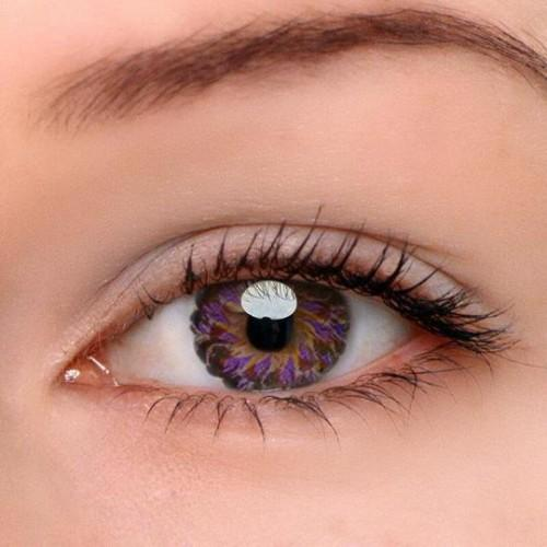 Eye Circle Lens Lolly Purple Colored Contact Lenses