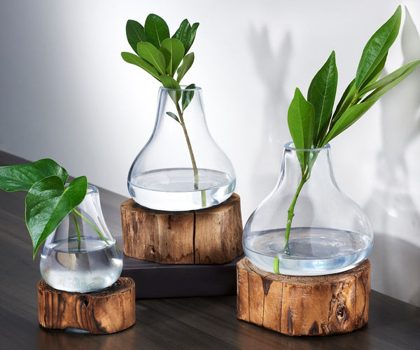 Clear Glass Vase w/ Wooden Base