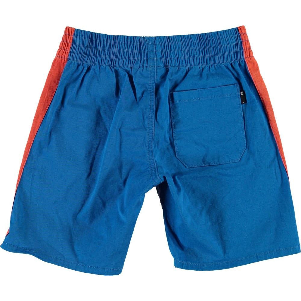 Anchor Azure  Shorts