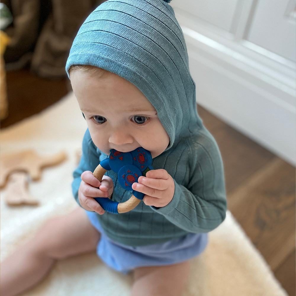 Blueberry Superfoods Teething Toy
