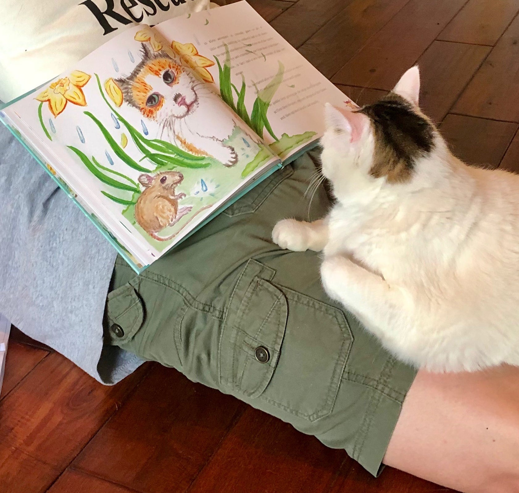 Book lovers (two and four-legged) are diving into Gata Unbound!