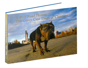 A Ruff Road Home: The Court Case Dogs of Chicago