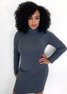 Felicia Turtleneck Dress