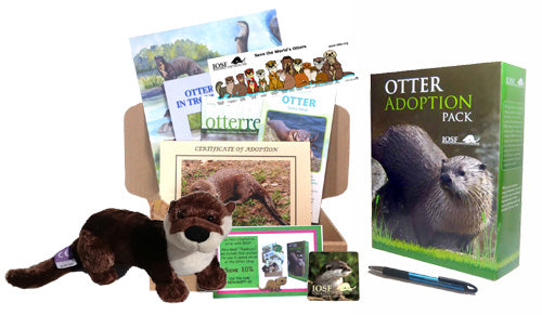 IOSF Otter Adoption Gift Box
