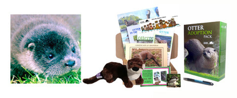 Otter Adoption Instant Voucher... for that last minute gift