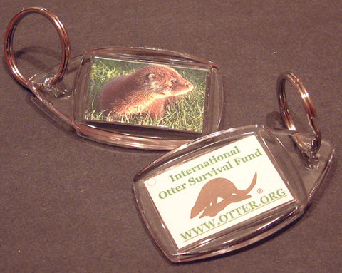 IOSF Otter key ring