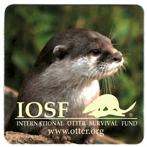 IOSF otter magnet