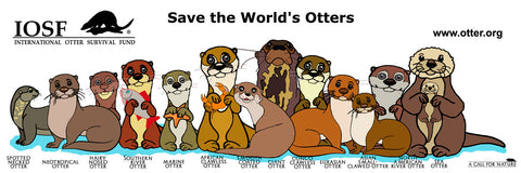 "IOSF ""Save the World's Otters"" window sticker"