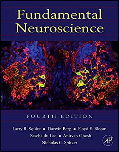 Fundamental Neuroscience (Squire,Fundamental Neuroscience)