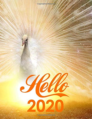 Hello 2020: 2020-2024 Planner 5 Year Planner With 60 Months Spread View Calendar, Cute Five Year Agenda, Schedule Notebook And Business Planner