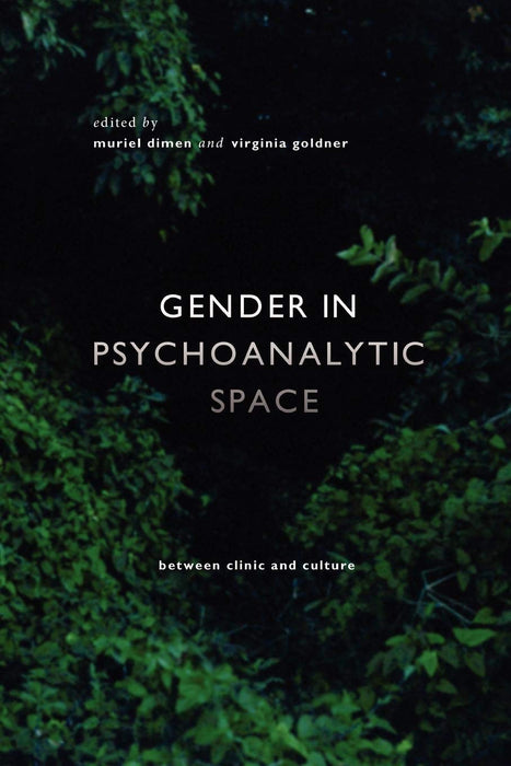 Gender in Psychoanalytic Space: Between clinic and culture (Conteporary Theory Series)