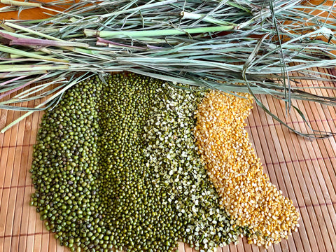 Four types of Mung Beans