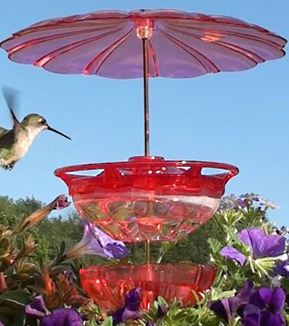 Aspects HummBlossom Accessory Kit - Hummingbird Market of Tucson, Arizona. Feeders and Nectar