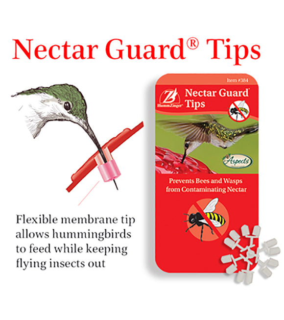 Aspects Nectar Guard Tips - Hummingbird Market of Tucson, Arizona. Feeders and Nectar