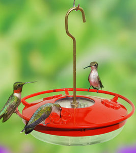 Aspects HummZinger® 8oz HighView™ Mini - Hummingbird Market of Tucson, Arizona. Feeders and Nectar