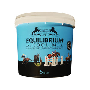 EQUILIBRIUM B1 COOL MIX BLUE
