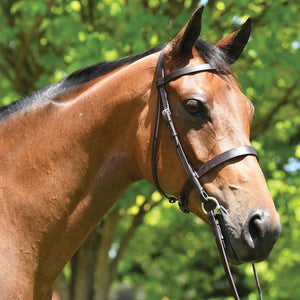 EUROHUNTER SHOW SNAFFLE BRIDLE