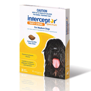 INTERCEPTOR SPECTRUM TASTY CHEWS MEDIUM