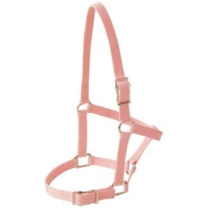 RANCHER FOAL HALTER WITH BUCKLES