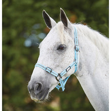 Load image into Gallery viewer, ROMA STRIPE HEAD COLLAR