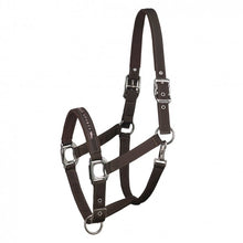 Load image into Gallery viewer, SCHOCKEMÖHLE SPORTS HALTER - MEMPHIS