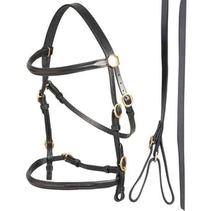 ZILCO IN-HAND SHOW BRIDLE