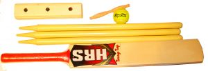 Beginners Kid's Cricket Set