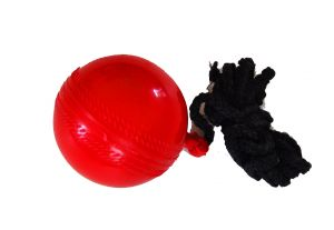 Basic Hanging Cricket Ball