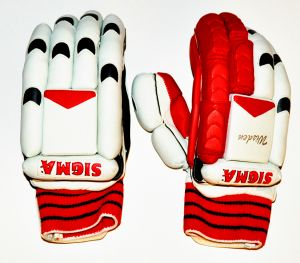 "Sigma ""Wisden"" Batting Gloves"
