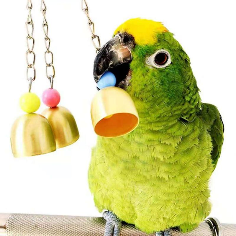 Small Parrot Toys