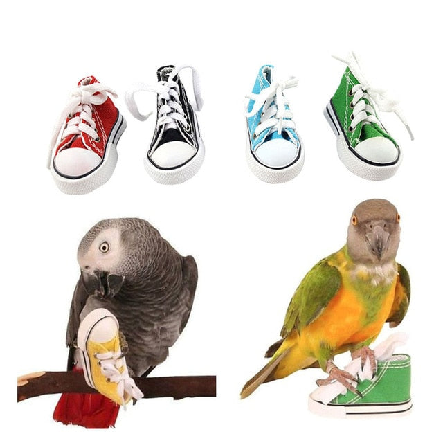 Shoes variety - Parrottoysplus