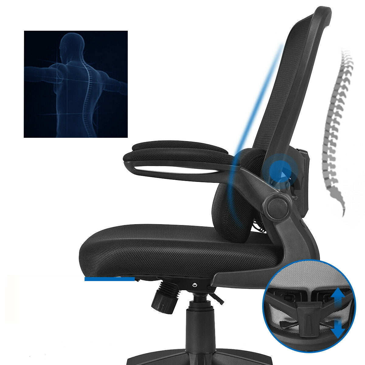 ErgoALS™ Ergonomic Desk Chair Lumbar Support Ergonomic Office Desk Chair