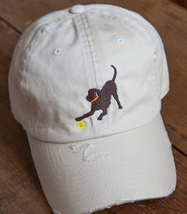 Off-White Distressed Embroidered Labrador Hats