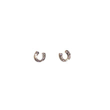 Load image into Gallery viewer, Petite Crystal Horseshoe Earrings