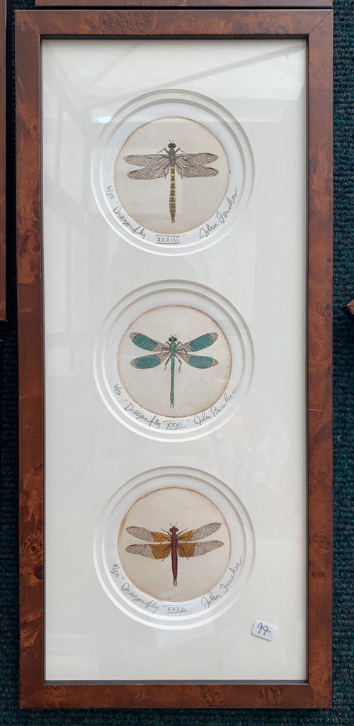 3 Dragonfly