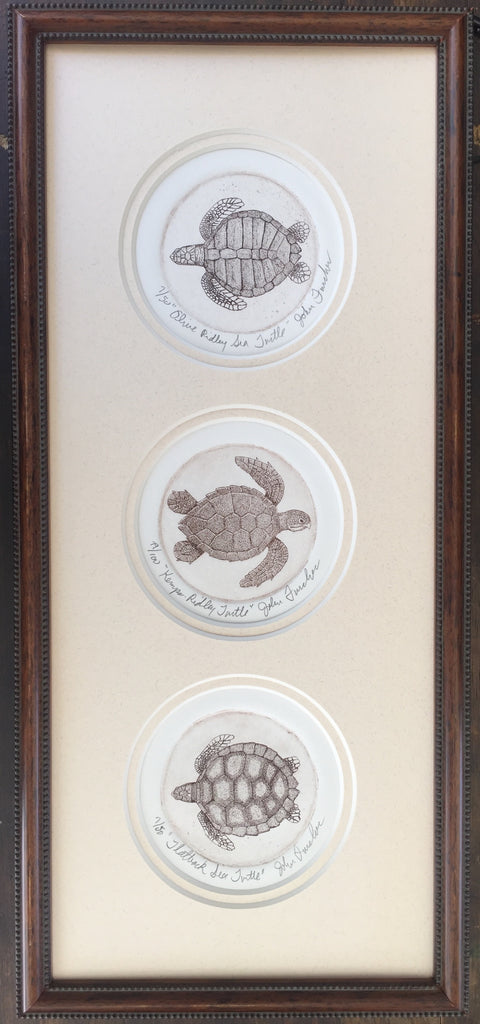 3 Sea Turtles