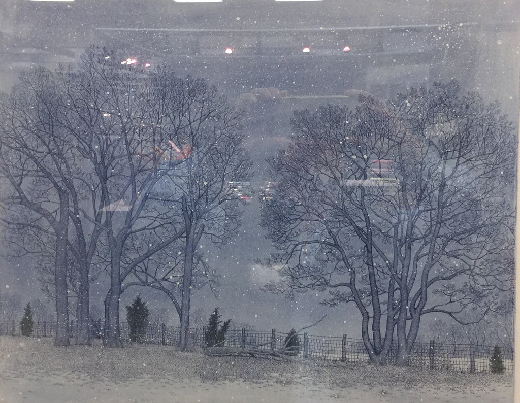Fenceline-Snow