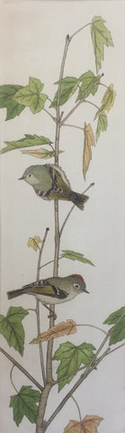 Ruby Crowned Kinglets