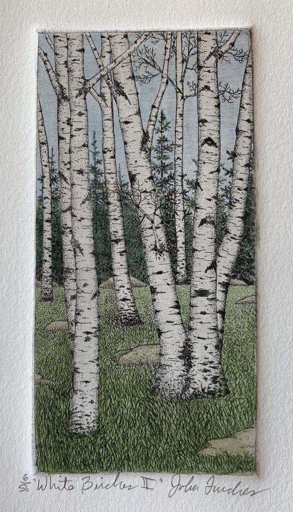 White Birch II