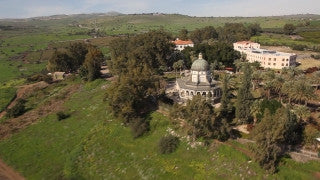 AN_038 Aerial helicopter footage of Haifa: Arab neighborhood and mosque