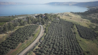 DN001B Aerial drone footage of the Sea of Galilee & Northern Israel: flying above fields and orchards towards Sea of Galilee
