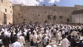 JJ_019 - Jewish sites in Jerusalem: Jewish prayers at the Western Wall tilt down