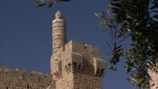 JJ_041 - Jewish sites in Jerusalem: Tower of David with Olive branches
