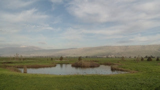 LN_001 Israel Nature and Landscape footage: Pan right to left of Hula Park and swamp